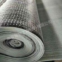 天然钠基膨润土防水毯厂家现货直销5000g膨润土防水毯批发图片