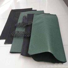 护坡生态袋生态条图片