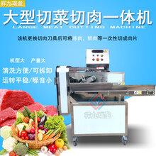 广州祥九瑞盈大型切菜切肉一体机大型切菜机生产线切菜机厂家图片