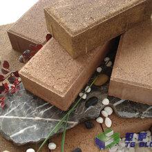 钦芃路面砖透水砖步道砖混凝土路面砖图片