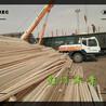 铁岭建筑用木方批发