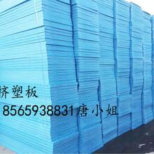 汕尾海豐縣擠塑板/隔熱擠塑板廠家圖片