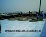 深圳光明区5公分挤塑板多少钱一片?
