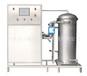 东莞污水处理1000G臭氧发生器养殖废水处理500G臭氧机脱色净化设备厂家行业底价供应