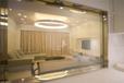 廣州歐藝OY單項透視調光玻璃