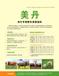 唯有美丹美康——預混料和微生態的完美結合,可為牛羊提供最佳生態養殖解決方案