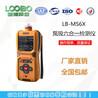 青岛路博LB-MS6X泵吸多气体检测仪