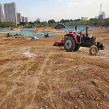 四川成都河道湖泊底泥改良劑專用底泥改良劑水質改良劑圖片