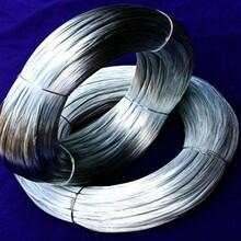 镀锌铁丝-葡萄架专用热镀锌铁钢丝多少钱一吨图片