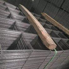 4MM楼房浇筑钢丝网片钢结构钢丝网片畅销图片