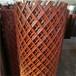 2米高喷漆钢板网-圈地钢板网哪家好?