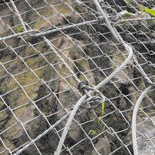 被动边坡防护网-隧道防落石网精准报价图片