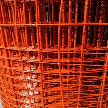 1.5米高包塑荷兰网圈地铁丝网100卷现货发图片