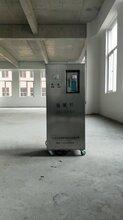 南浔臭氧发生器用于猪舍消毒杀菌除味图片