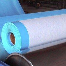 山东旭泰1.2厚带布加筋PVC防水卷材光板pvc防水卷材图片