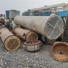 出售充填式不锈钢列管冷凝器二手10平方冷凝器二手冷凝器