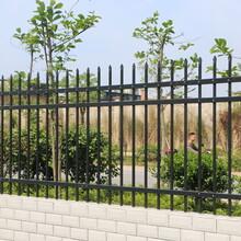 别墅护栏围墙设计图片