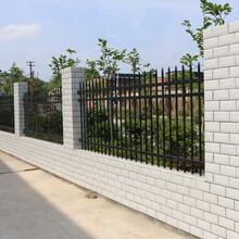 安順鋅鋼隔離護欄,定制鐵藝圍欄圖片