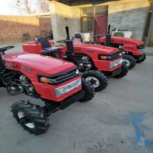 多功能果园管理机小型农用四轮拖拉机超低矮大棚王拖拉机图片