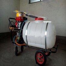 汽油喷雾器手推式打药机果园大棚打药机大容量杀虫喷雾机械图片