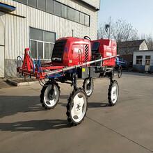 柴油动力农作物喷雾器大型自走式四轮打药机水旱两用打药机厂家图片