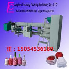 专业生产网套机水果网套机图片