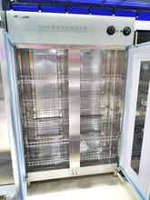 康煜YTP-1280B康煜雙門中溫消毒柜熱風循環商用保潔柜烘干消毒柜304不銹鋼圖片