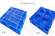 瀘州市田字網格塑膠托盤玻璃瓶塑膠托盤價格