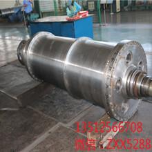 新疆克拉瑪依貝亞雷斯FP600果膠臥螺脫水離心機維修差速器圖片
