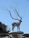 山東聊城大型雕塑美陳可來圖定制廠家