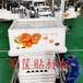 樂九自動雙面貼標塑料水果框雙面貼標機LJ-760
