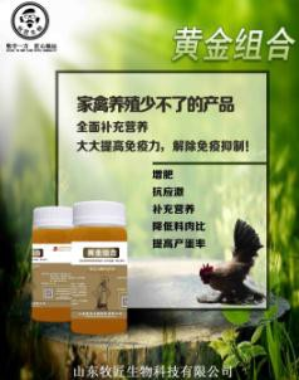 鸡应激反应的原因,鸡应激反应怎么解决,鸡常规疫苗应激解释