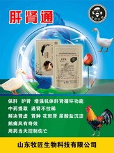 禽痛風癥狀及治療,小鵝痛風治療方案,純中藥治愈鵝痛風圖片