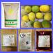 深圳奶茶原料批發奶茶原料供應商