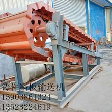 304不锈钢给料机鳞板输送机耐高温铸件用的鳞板机器图片