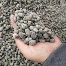 本格供應保溫陶粒建筑回填輕質陶粒圖片
