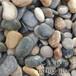 焦作鹅卵石滤料价格