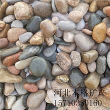 苏州河卵石图片