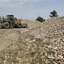 赤峰电厂用鹅卵石多少钱一吨图』片