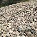 菏澤拋光鵝卵石生產廠家
