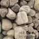 鄂爾多斯拋光鵝卵石多少錢一噸