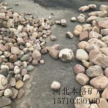 朔州电厂用鹅卵石生产厂家图片