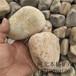 连云港大块鹅卵石多少钱一吨