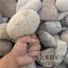 滨州大块鹅卵石厂家