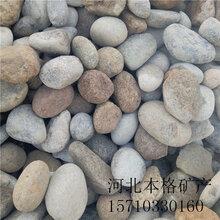 锡林郭勒电厂用鹅卵石生产厂家图片