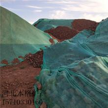 芜湖火山石浮石价格图片