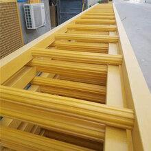 衡水玻璃钢护笼梯厂家frp材质梯子图片