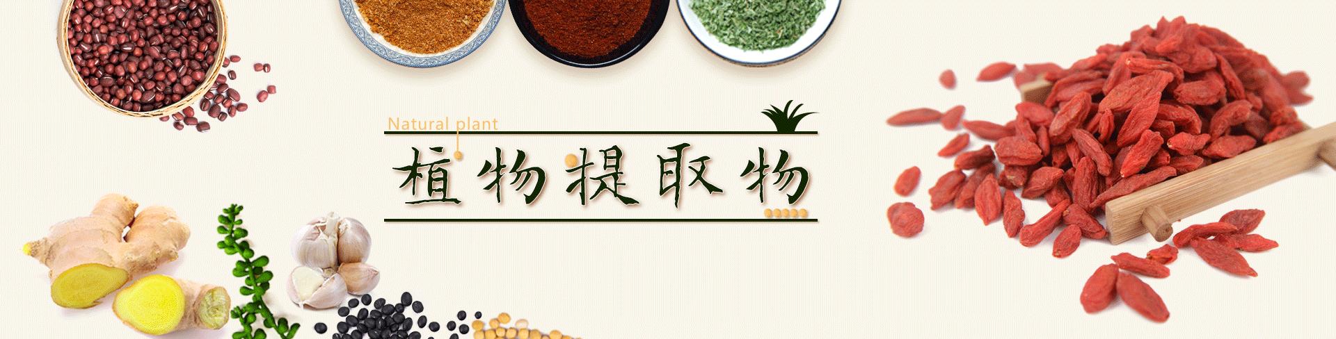广州嘉源化工有限公司