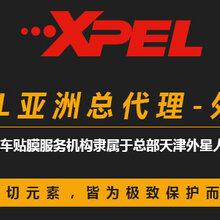 成都外星人汽车贴膜-XPEL隐形车衣-保护车漆-持久镜面效果图片
