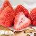 FD草莓脆